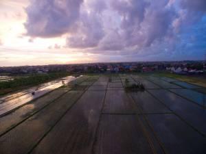Bali expat lifestyle