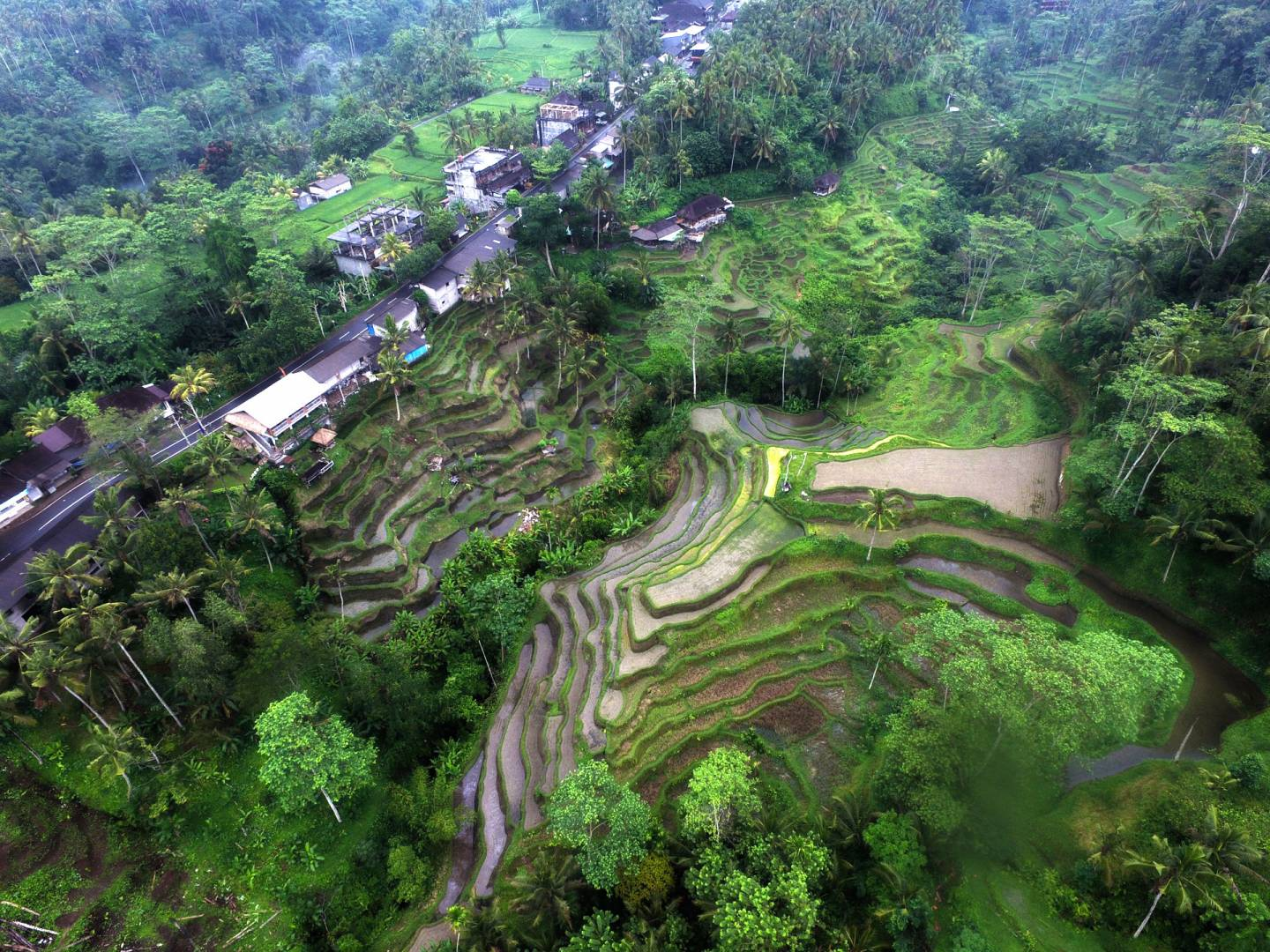 Bali Indonesia Aerial Stock footage (Broll) for License