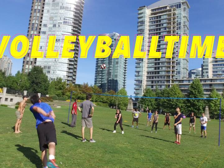Volleyball Grass – Stock Footage