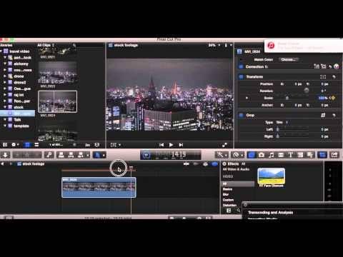 Videographer in Tokyo Japan