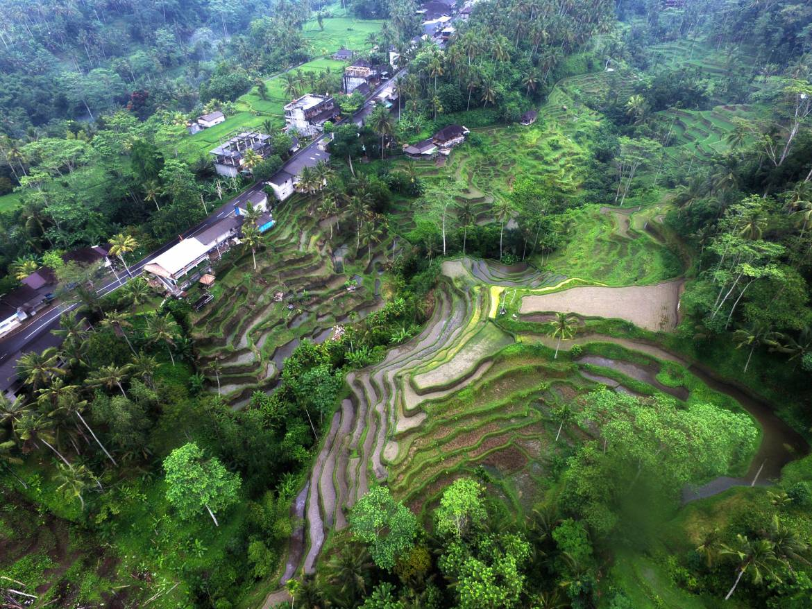 Bali Indonesia Aerial Stock footage