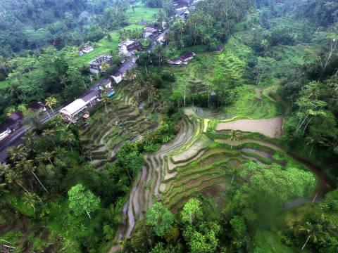 Bali Indonesia Aerial Stock footage