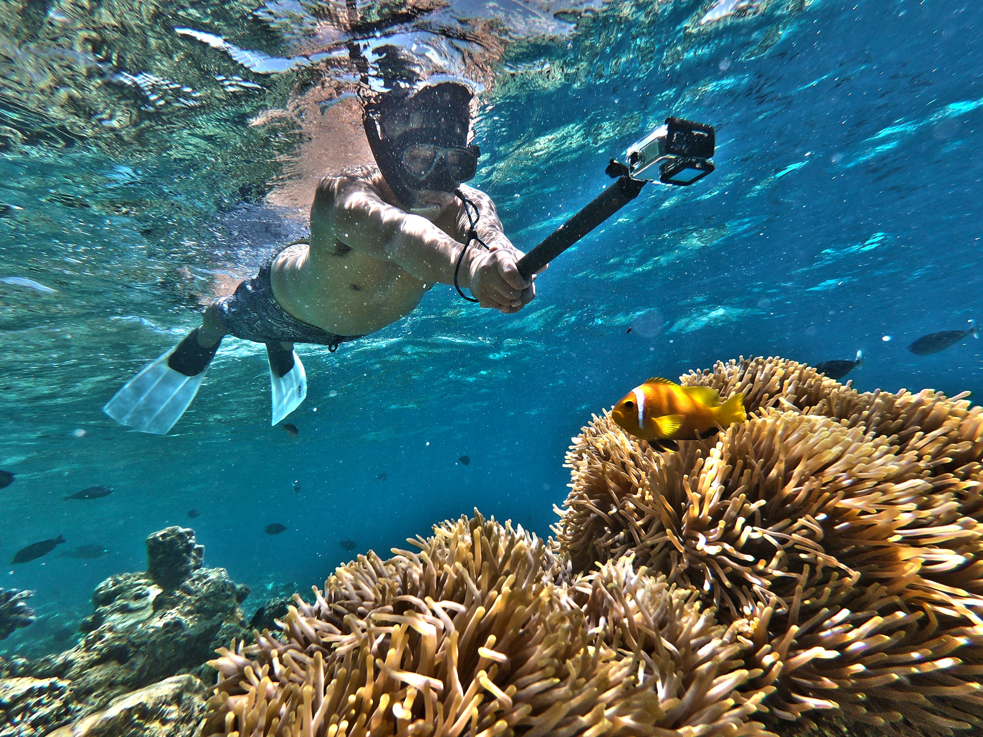 Maldives Videographer